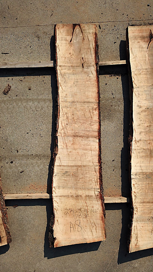 Slab Inventory By Bailey Wood Products