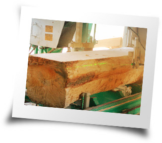 Photo of the sawmill cutting a log