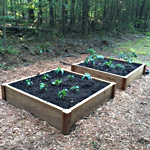 Raised Bed Garden Frames